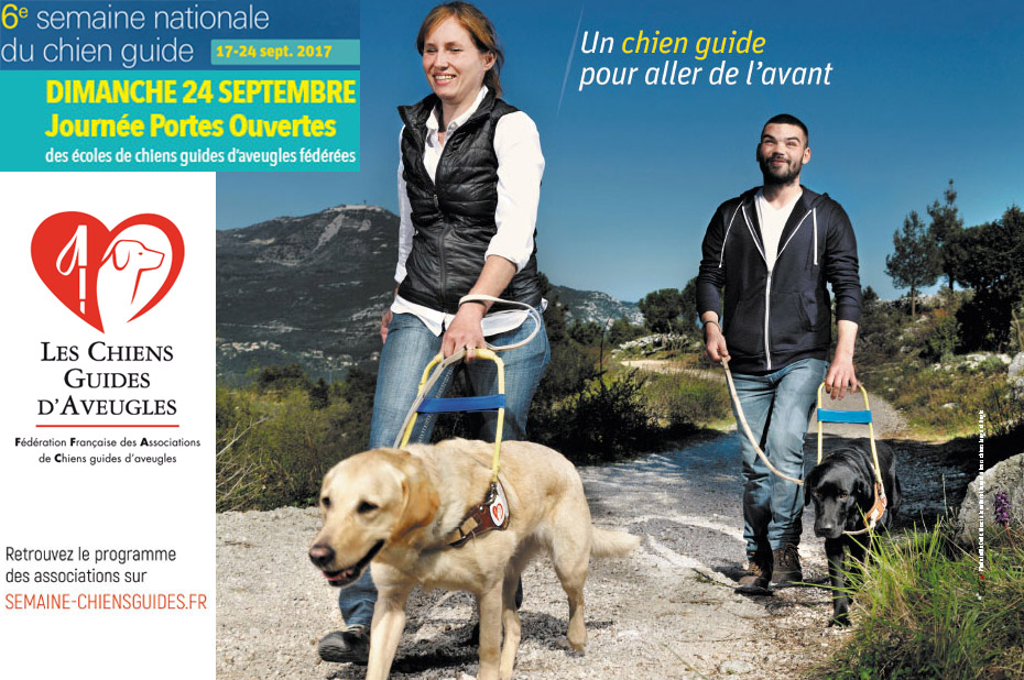 Semaine chien guide